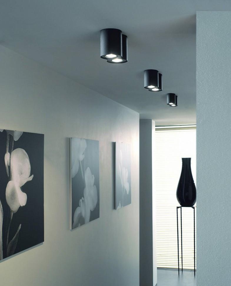 Черный двойной потолочный светильник